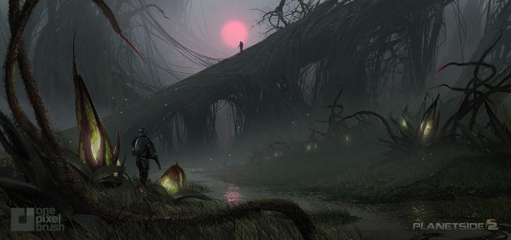 swamp-camp
