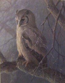 giant owl