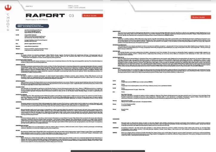raport 3