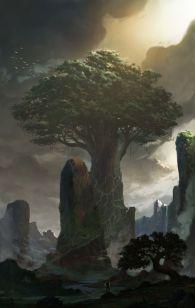 drzewo i kamienie 2